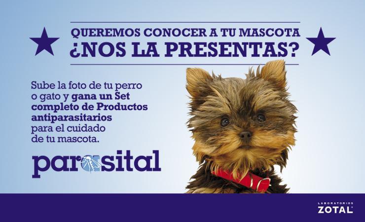 Laboratorios Zotal lanza el primer concurso de fotografías de mascotas