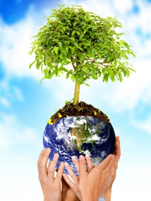 Laboratorios Zotal celebra el día del Medio Ambiente comprometido con la causa