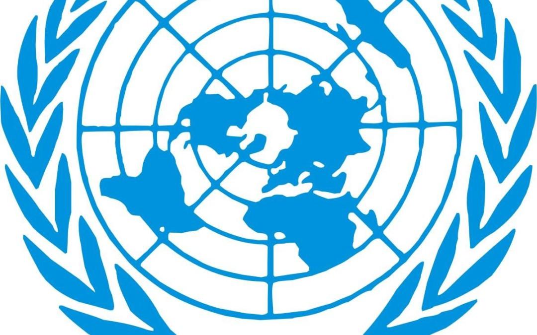 Laboratorios Zotal en las Jornadas para las Licitaciones Internacional de la ONU