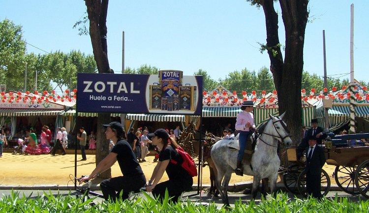 limpieza y cuidados del caballo en las ferias