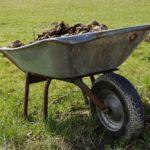 imagen destacada del artículo sobre el tratamiento del estiercol para evitar las larvas de insectos