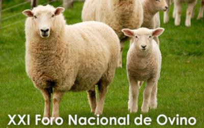 Zotal colaboró en el XXI Foro Nacional de Ovino